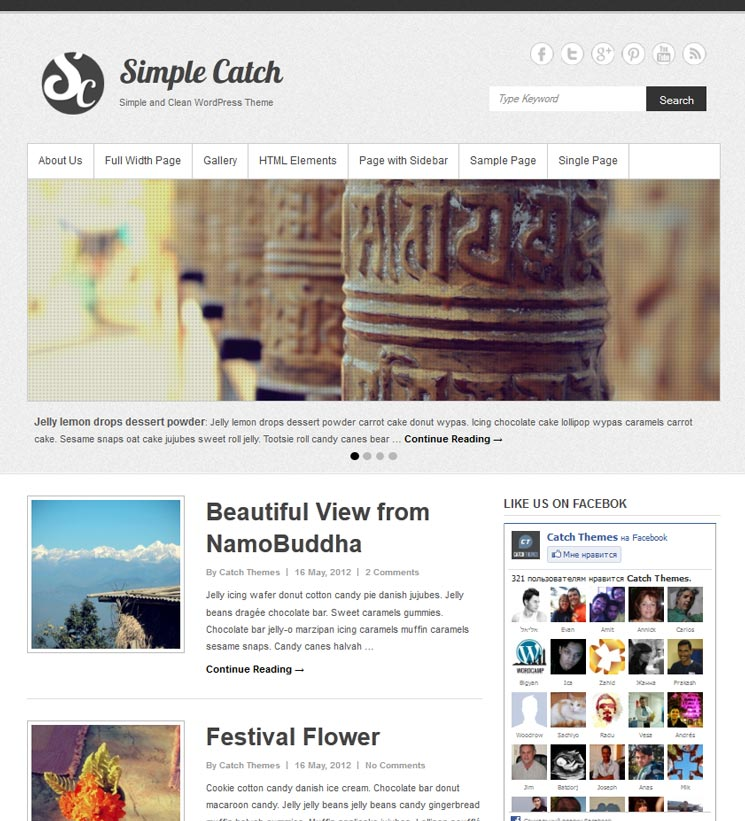 Simple Catch WordPress шаблон
