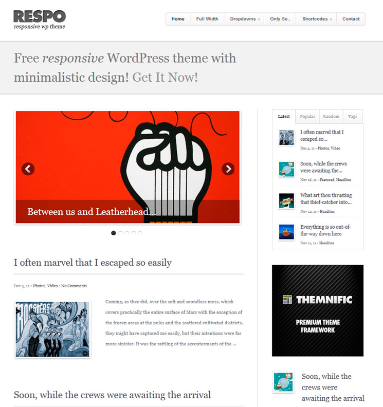Respo Theme WordPress шаблон