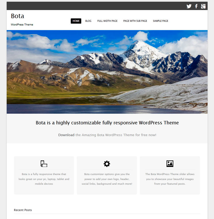 Bota WordPress шаблон