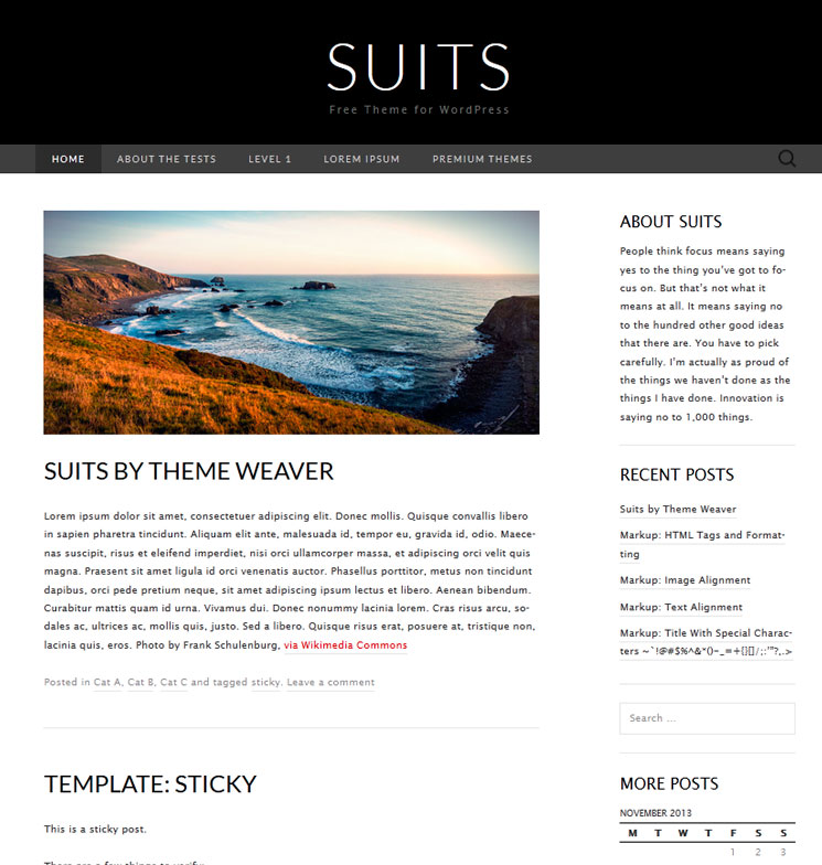 Suits WordPress шаблон