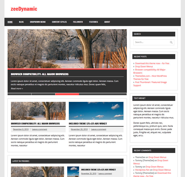 zeeDynamic WordPress шаблон