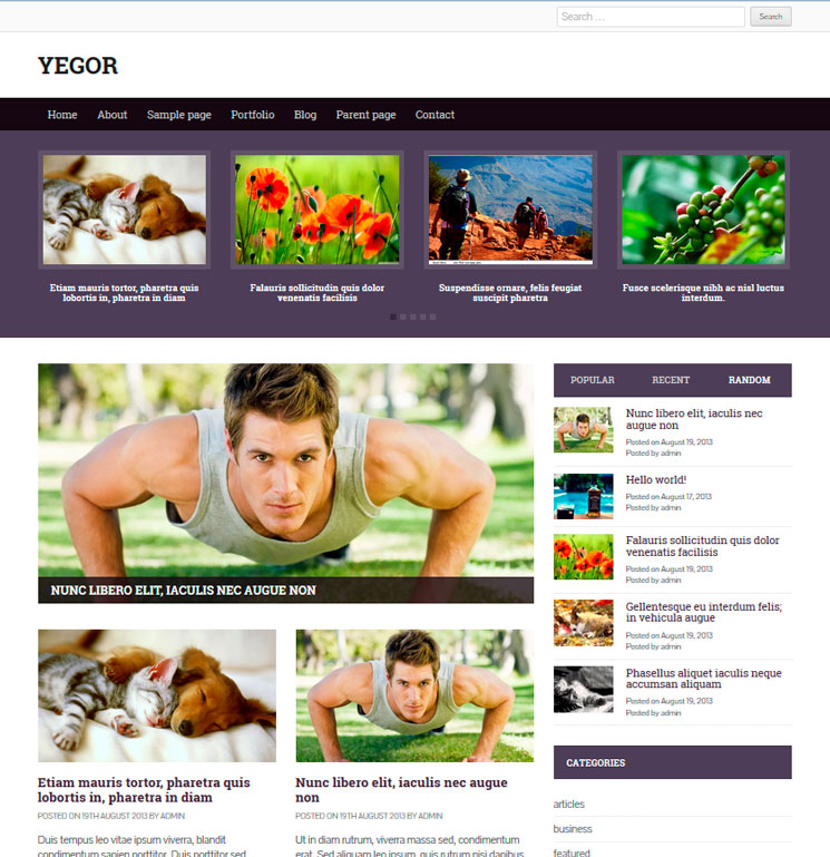 Yegor WordPress шаблон