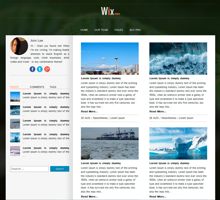 Wix WordPress шаблон
