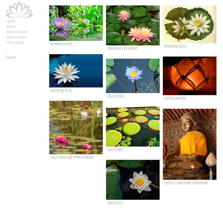 Water Lily WordPress шаблон