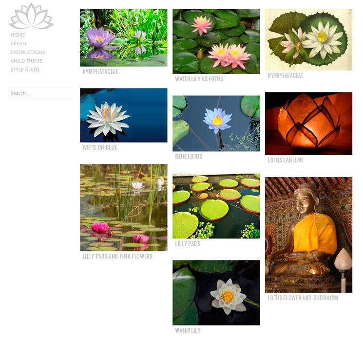 Water Lily WordPress шаблон