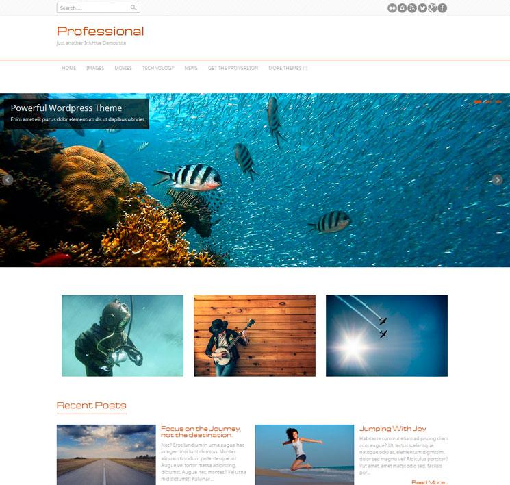 Professional WordPress шаблон