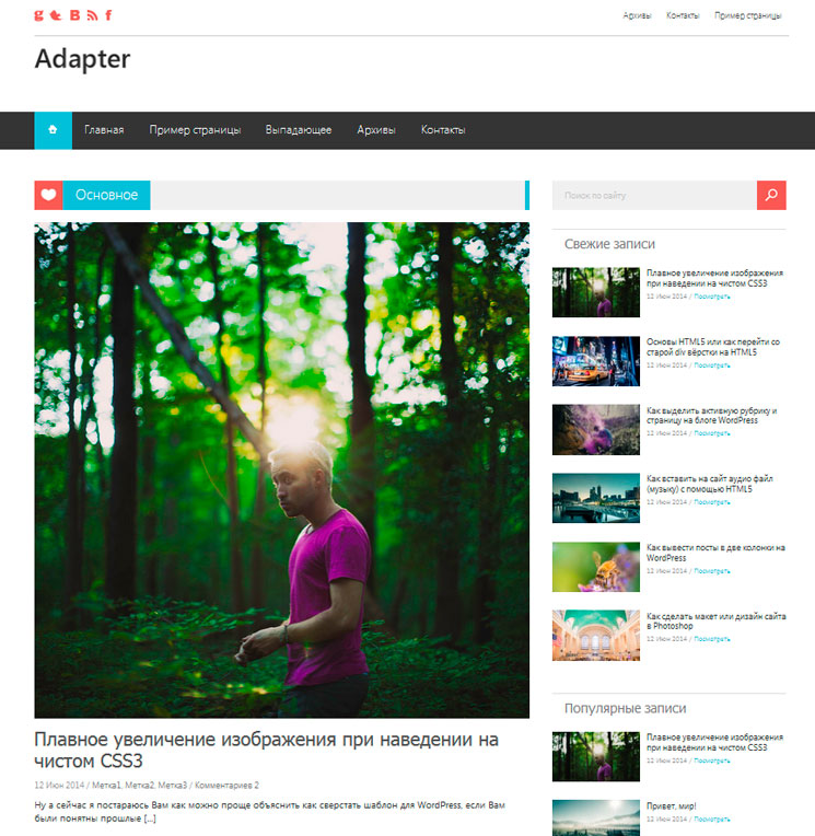 Adapter WordPress шаблон