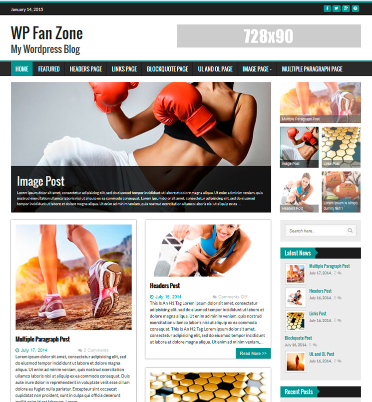 FanZone WordPress шаблон