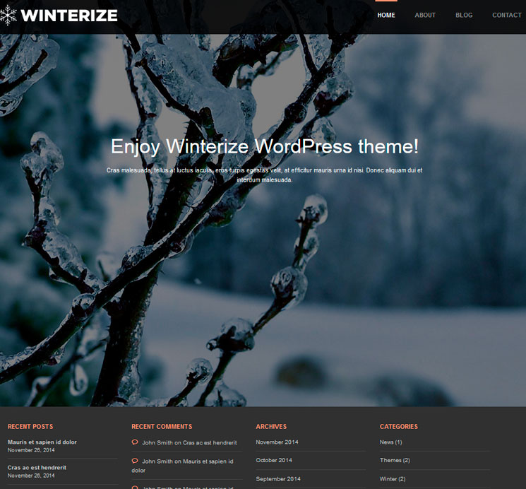 Winterize WordPress шаблон