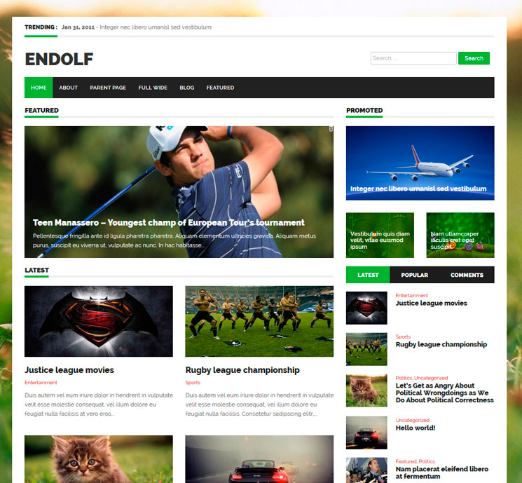 Endolf WordPress шаблон