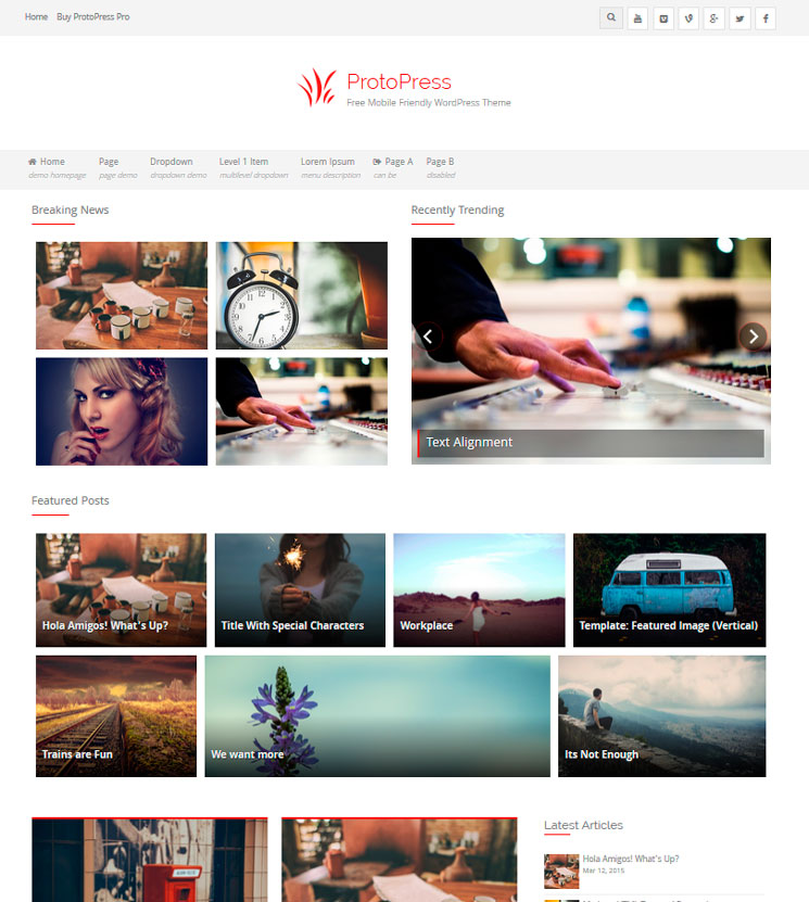 ProtoPress WordPress шаблон