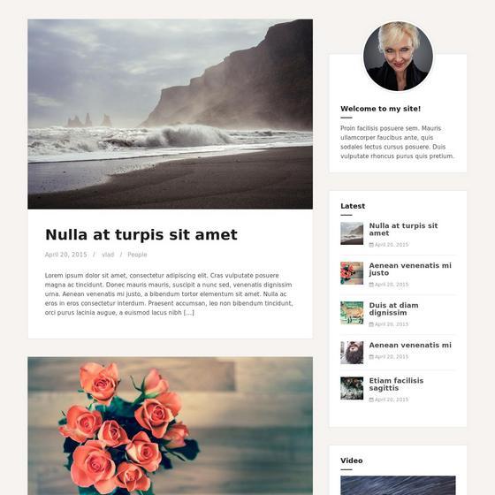 Amadeus WordPress шаблон