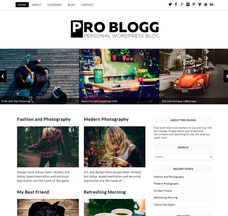 Pro Blogg WordPress шаблон