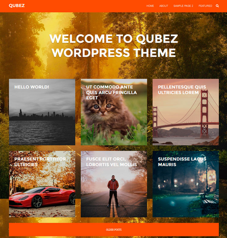 Qubez WordPress шаблон