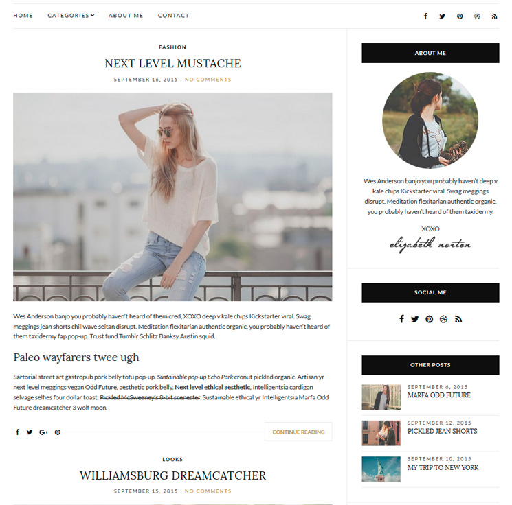 Olsen Light WordPress шаблон