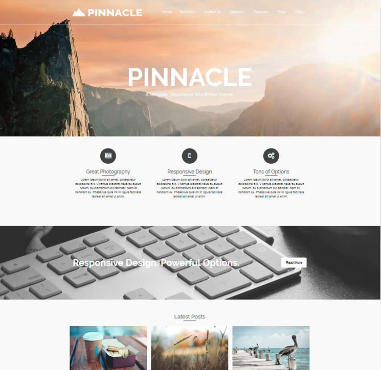 Pinnacle WordPress шаблон