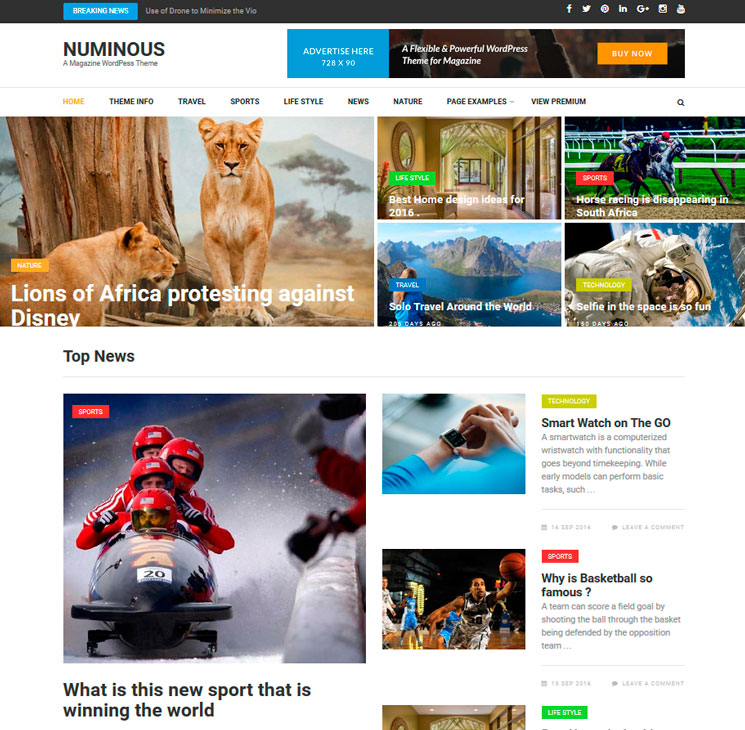 Numinous WordPress шаблон